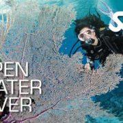 OPEN WATER DIVER – kurs podstawowy